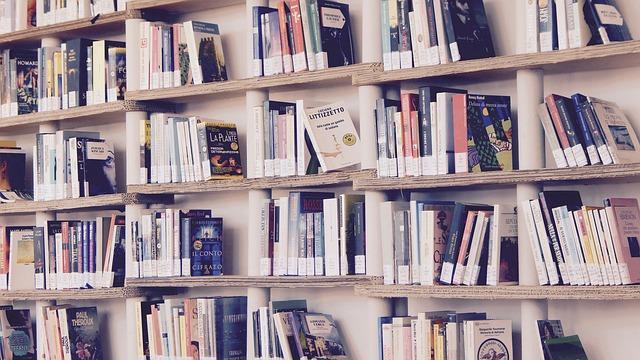 Handbücher übersetzen